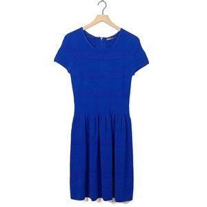 J Mclaughlin Royal Blue Ponte Knit Stretch Dress